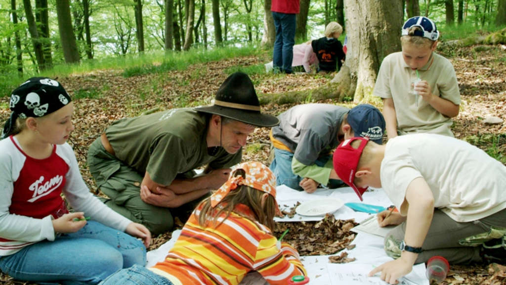 Wildnisbildung im Nationalpark Kellerwald-Edersee (Photo: Nationalpark Kellerwald-Edersee)