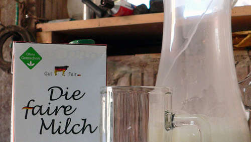 Internationaler Tag der Milch