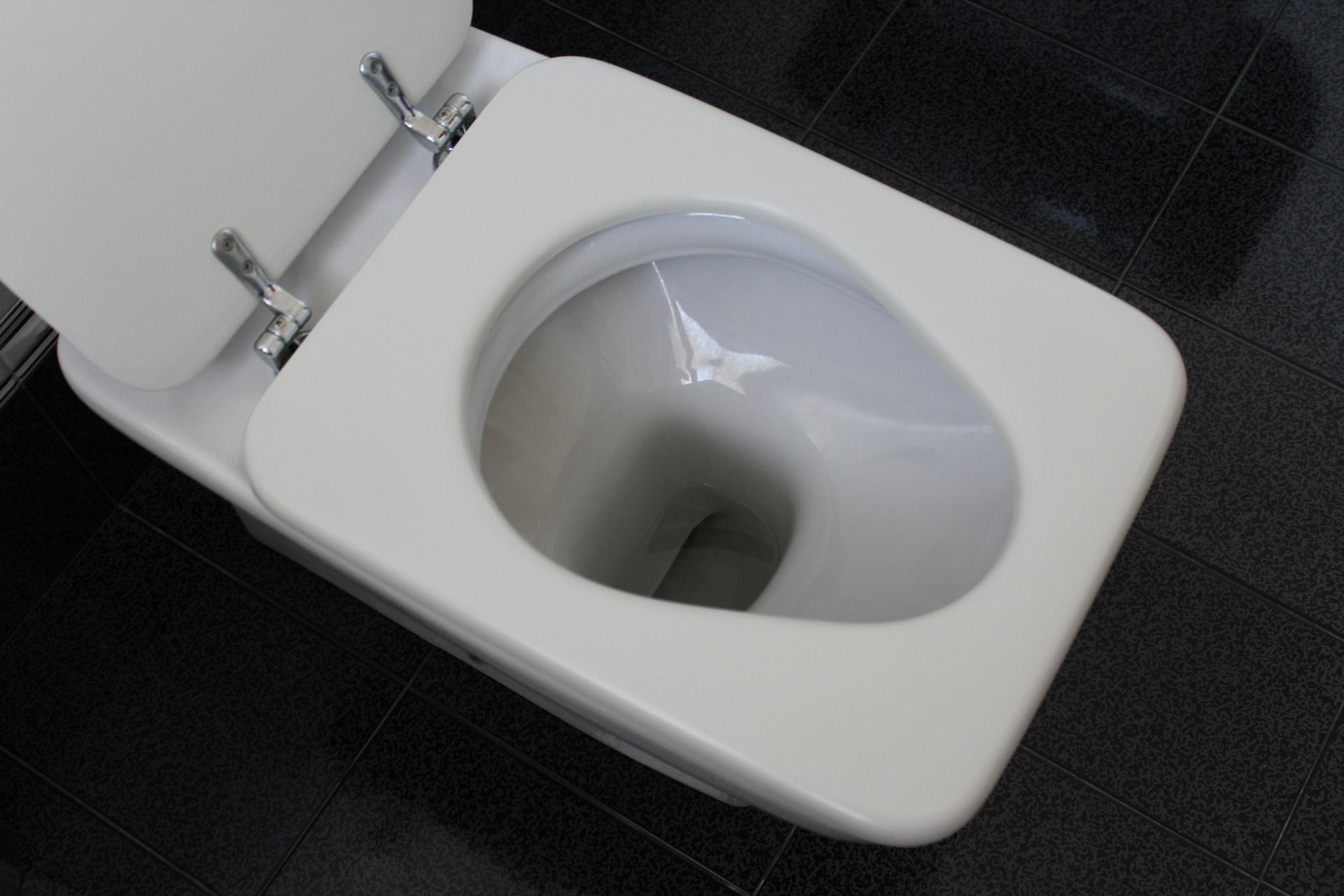 toilette verstopft wie p mpel und pet flasche f r erl sung sorgen wohnen. Black Bedroom Furniture Sets. Home Design Ideas