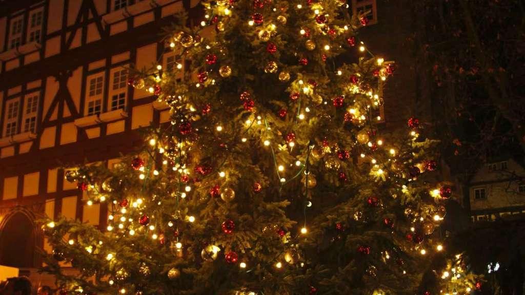 Weihnachtsmarkt Melsungen.Stadt Melsungen Sucht Großen Tannenbaum Für Den Weihnachtsmarkt