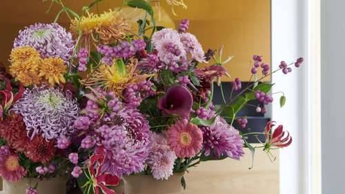 Chrysanthemen mit Gerbera in Vase stellen