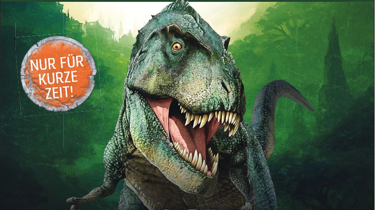 Dino Kassel