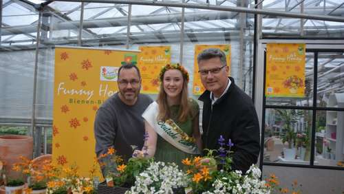 """Funny Honey"" ist Sommerblume 2019"