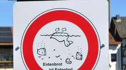 """Entenbrot ist Ententod"